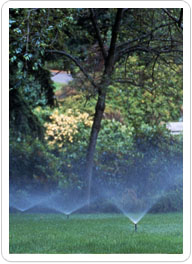 commercial lawn maintenance bucks county pa